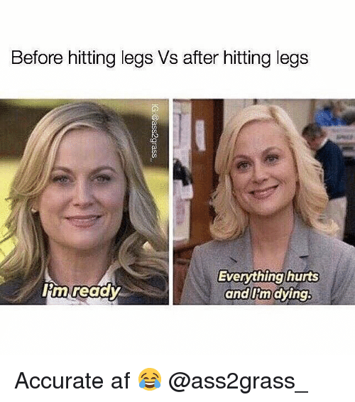 Af, Gym, and Afs: Before hitting legs Vs after hitting legs  CO  lim readv  Everything hurts  and Iim dying Accurate af 😂 @ass2grass_