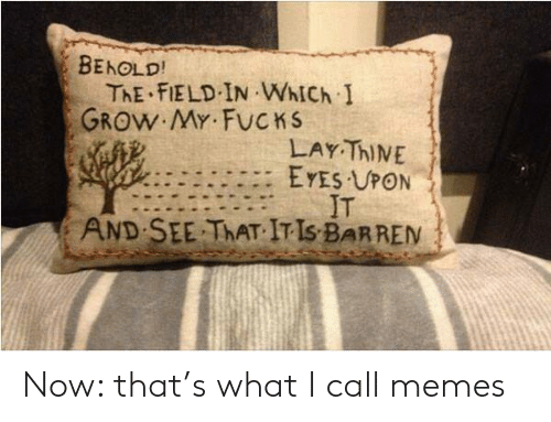 field: BEHOLD!  ThE FIELD IN WhICh I  GROW MY FUCKS  LAY ThINE  EYES UPON  IT  SEE THAT IT IS BARREN  AND Now: that's what I call memes