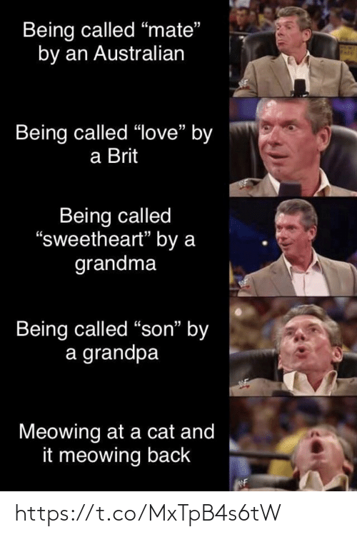 "son: Being called ""mate""  by an Australian  Being called ""love"" by  a Brit  Being called  ""sweetheart"" by a  grandma  Being called ""son"" by  a grandpa  Meowing at a cat and  it meowing back https://t.co/MxTpB4s6tW"