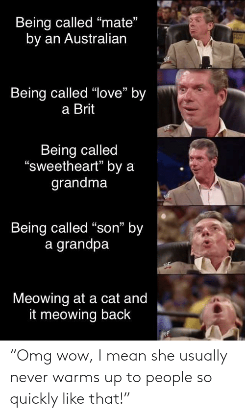 "son: Being called ""mate""  by an Australian  Being called ""love"" by  a Brit  Being called  ""sweetheart"" by a  grandma  Being called ""son"" by  a grandpa  Meowing at a cat and  it meowing back  WF ""Omg wow, I mean she usually never warms up to people so quickly like that!"""