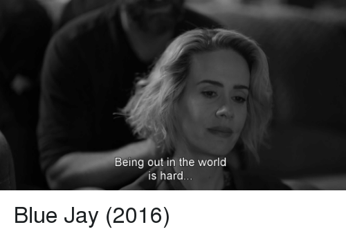 Blue Jay: Being out in the world  is hard Blue Jay (2016)