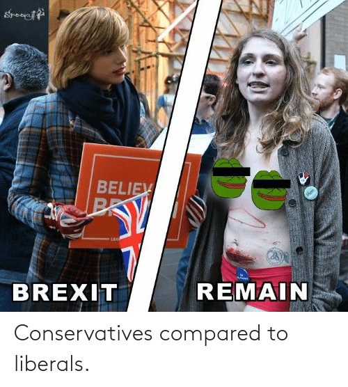 Leal: BELIEV  BRK  Vignt  LEAL  BREXIT  REMAIN Conservatives compared to liberals.