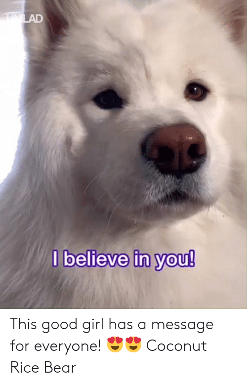 Dank, Bear, and Girl: believe in Vou! This good girl has a message for everyone! 😍😍  Coconut Rice Bear