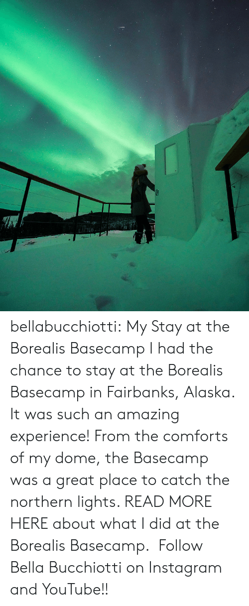 Instagram, Tumblr, and youtube.com: bellabucchiotti: My Stay at the Borealis Basecamp   I had the chance to stay at the Borealis Basecamp  in Fairbanks, Alaska. It was such an amazing experience! From the comforts of my dome,  the Basecamp was a great place to catch the northern lights. READ MORE HERE about what I did at the Borealis Basecamp.    Follow Bella Bucchiotti on Instagram and YouTube!!