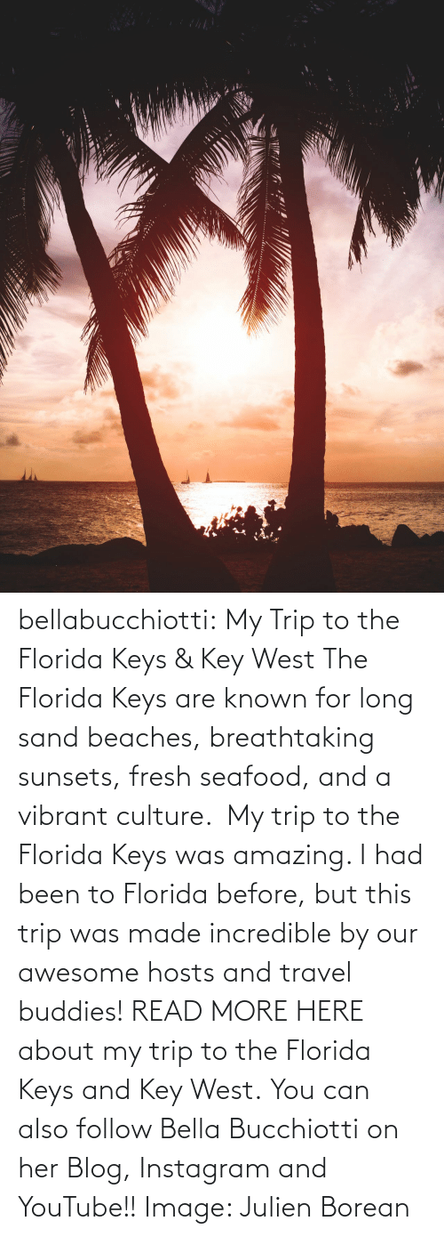youtube.com: bellabucchiotti: My Trip to the Florida Keys & Key West  The Florida Keys are known for long sand beaches, breathtaking sunsets,  fresh seafood, and a vibrant culture.  My trip to the Florida Keys was  amazing. I had been to Florida before, but this trip was made incredible  by our awesome hosts and travel buddies!  READ MORE HERE about my trip to the Florida Keys and Key West. You can also follow Bella Bucchiotti on her Blog, Instagram and YouTube!! Image:     Julien Borean