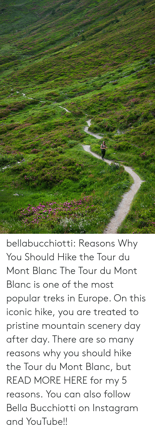 Hike: bellabucchiotti:  Reasons Why You Should Hike the Tour du Mont Blanc   The Tour du Mont Blanc is one of the most popular treks in Europe. On  this iconic hike, you are treated to pristine mountain scenery day after  day. There are so many reasons why you should hike the Tour du Mont  Blanc, but READ MORE HERE for my 5 reasons.   You can also follow Bella Bucchiotti on Instagram and YouTube!!