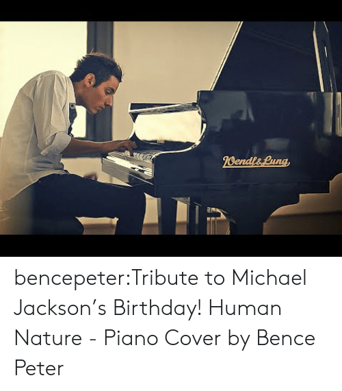 Michael Jackson: bencepeter:Tribute to Michael Jackson's Birthday! Human Nature - Piano Cover by Bence Peter