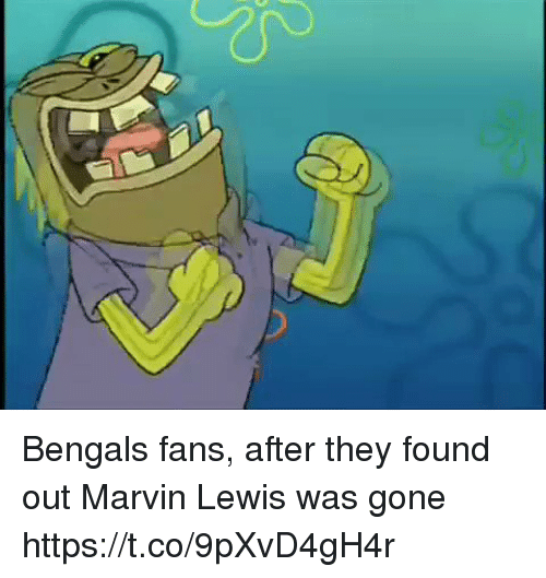 Bengals: Bengals fans, after they found out Marvin Lewis was gone https://t.co/9pXvD4gH4r
