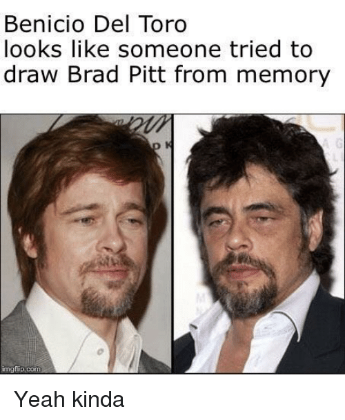 Brad Pitt: Benicio Del Toro  looks like someone tried to  draw Brad Pitt from memory  mgtilip.com Yeah kinda