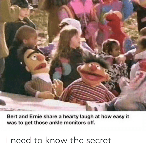 the secret: Bert and Ernie share a hearty laugh at how easy it  was to get those ankle monitors off. I need to know the secret