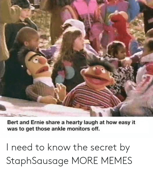 the secret: Bert and Ernie share a hearty laugh at how easy it  was to get those ankle monitors off. I need to know the secret by StaphSausage MORE MEMES