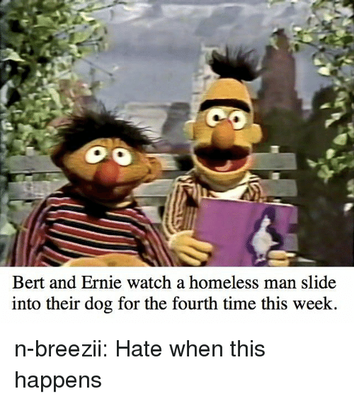 homeless man: Bert and Ernie watch a homeless man slide  into their dog for the fourth time this week n-breezii:  Hate when this happens