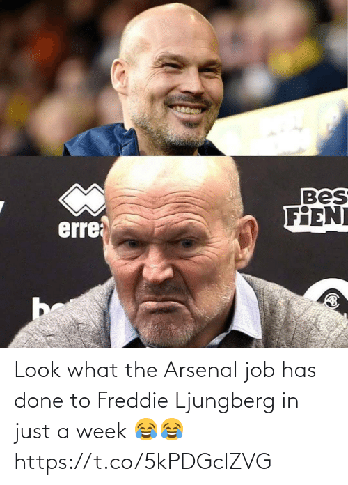 Arsenal, Soccer, and Job: Bes  FIENI  erre  be Look what the Arsenal job has done to Freddie Ljungberg in just a week 😂😂 https://t.co/5kPDGclZVG