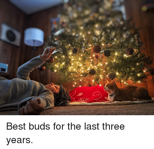 Best, Three, and For: Best buds for the last three years.