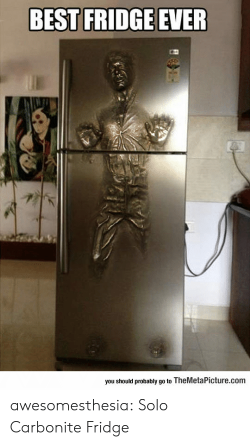 Tumblr, Best, and Blog: BEST FRIDGE EVER  you should probably go to TheMetaPicture.com awesomesthesia:  Solo Carbonite Fridge