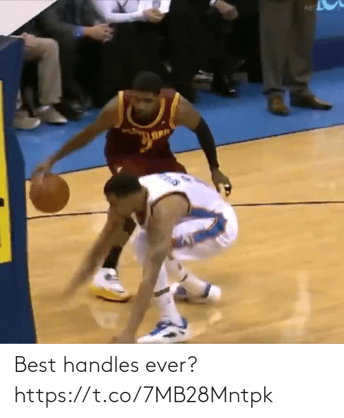 handles: Best handles ever? https://t.co/7MB28Mntpk