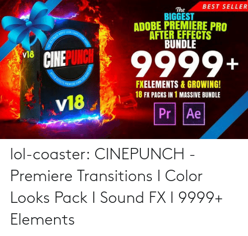 Biggest: BEST SELLER  The  BIGGEST  ADOBE PREMIERE PRO  AFTER EFFECTS  BUNDLE  OOA COMPLE  9999+  v18  FXELEMENTS & GROWING!  18 FX PACKS IN 1 MASSIVE BUNDLE  v18  Pr Ae lol-coaster:  CINEPUNCH - Premiere Transitions I Color Looks Pack I Sound FX I 9999+ Elements