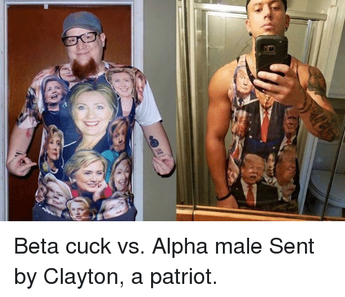 Alpha Vs Beta Alpha Meme On Me Me