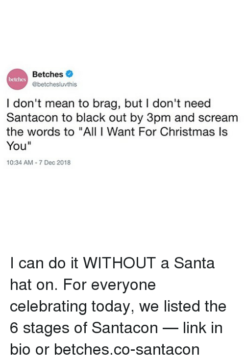 """black out: Betches  @betchesluvthis  betches  I don't mean to brag, but I don't need  Santacon to black out by 3pm and scream  the words to """"All I Want For Christmas ls  You""""  10:34 AM 7 Dec 2018 I can do it WITHOUT a Santa hat on. For everyone celebrating today, we listed the 6 stages of Santacon — link in bio or betches.co-santacon"""