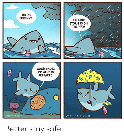 safe: Better stay safe