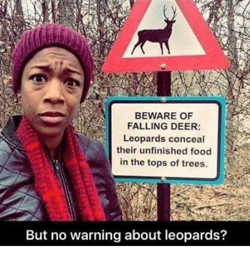 Deer, Food, and Trees: BEWARE OF  FALLING DEER:  Leopards conceal  their unfinished food  in the tops of trees.  But no warning about leopards?