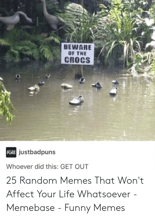 memebase: BEWARE  OF THE  CROCS  justbadpuns  Whoever did this: GET OUT 25 Random Memes That Won't Affect Your Life Whatsoever - Memebase - Funny Memes