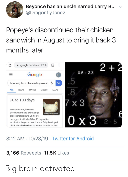 2 2: Beyonce has an uncle named Larry B...  @DragonflyJonez  Popeye's discontinued their chicken  sandwich in August to bring it back 3  months later  2 +2  google.com/search?cli  14  0.5 2.3  Google  ТР  .5  how long for a chicken to grow up  .8  ALL  NEWS  IMAGES  VIDEOS  МAPS  90 to 100 days  7 x 3  Nice question the entire  development and laying eggs  timbercreekfarme...  process takes 25 to 26 hours  Ох3 2-5  per eggs .It will take 20 or 21 days after  incubation begins to hatch into a fully developed  chick. the chicken has take three months to four  8:12 AM 10/28/19 Twitter for Android  3,166 Retweets 11.5K Likes  1P  .. Big brain activated