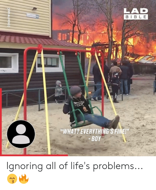 "Dank, Bible, and Boy: BIBLE  ""WHAT? EVERYTHING'S FINE!  BOY Ignoring all of life's problems... 😙🔥"
