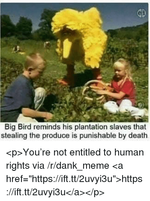 """Dank, Meme, and Death: Big Bird reminds his plantation slaves that  stealing the produce is punishable by death <p>You're not entitled to human rights via /r/dank_meme <a href=""""https://ift.tt/2uvyi3u"""">https://ift.tt/2uvyi3u</a></p>"""
