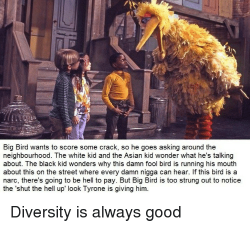 white kid: Big Bird wants to score some crack, so he goes asking around the  neighbourhood. The white kid and the Asian kid wonder what he's talking  about. The black kid wonders why this damn fool bird is running his mouth  about this on the street where every damn nigga can hear. If this bird is a  narc, there's going to be hell to pay. But Big Bird is too strung out to notice  the 'shut the hell up look Tyrone is giving him. Diversity is always good