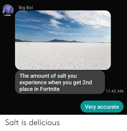 Dank Memes, Experience, and Salt: Big Boi  The amount of salt you  experience when you get 2nd  place in Fortnite  11:42 AM  Very accurate Salt is delicious