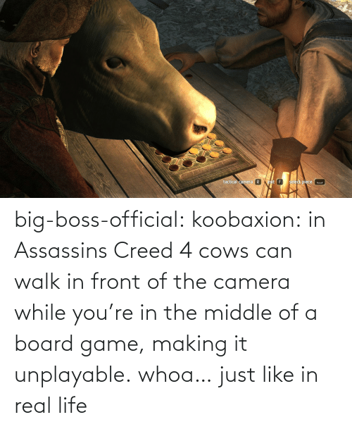 Just Like: big-boss-official: koobaxion: in Assassins Creed 4 cows can walk in front of the camera while you're in the middle of a board game, making it unplayable. whoa… just like in real life