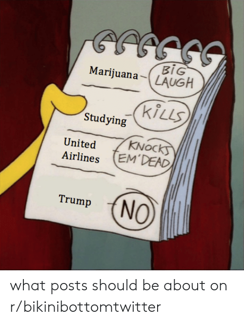 Trump No: BIG  MarijuanaLAUGH  KiLLS  Studying  KNOC  United  Airlines EM'DEAD  Trump (NO what posts should be about on r/bikinibottomtwitter