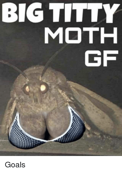 Goals, Big, and Moth: BIG TITTY  MOTH  GF Goals