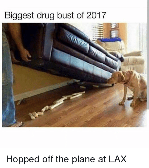 Memes, Drug, and 🤖: Biggest drug bust of 2017 Hopped off the plane at LAX