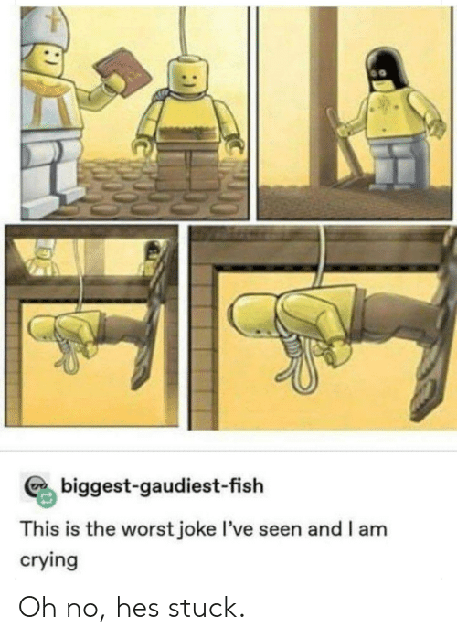 Crying, The Worst, and Fish: biggest-gaudiest-fish  This is the worst joke I've seen and I am  crying Oh no, hes stuck.