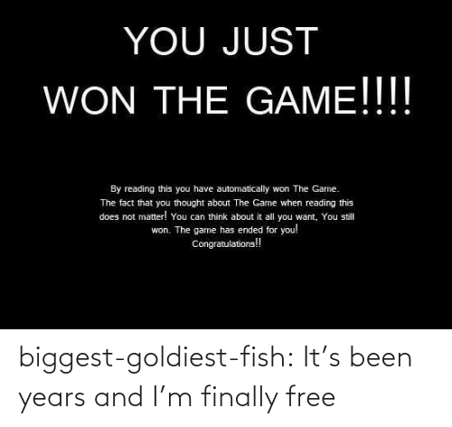 finally: biggest-goldiest-fish: It's been years and I'm finally free