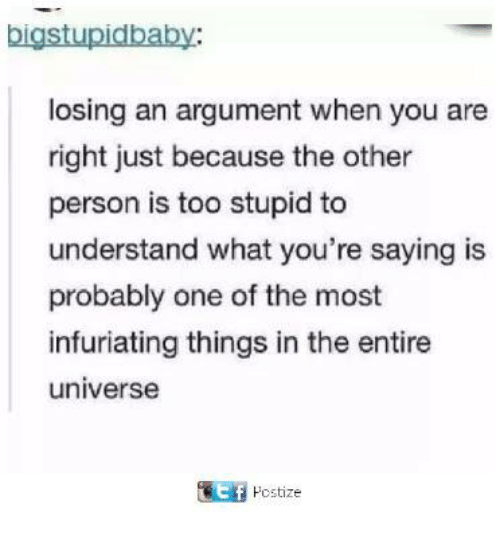 Dank, 🤖, and Universe: bigstupidbaby:  losing an argument when you are  right just because the other  person is too stupid to  understand what you're saying is  probably one of the most  infuriating things in the entire  universe