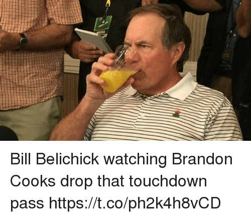 Bill Belichick, Tom Brady, and Belichick: Bill Belichick watching Brandon Cooks drop that touchdown pass https://t.co/ph2k4h8vCD