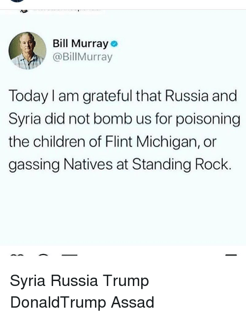 Children, Memes, and Bill Murray: Bill Murray  @BillMurray  Today I am grateful that Russia and  Syria did not bomb us for poisoning  the children of Flint Michigan, or  gassing Natives at Standing Rock Syria Russia Trump DonaldTrump Assad