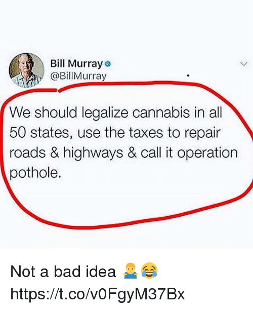 Bill Murray: Bill Murray  @BillMurray  We should legalize cannabis in all  50 states, use the taxes to repair  roads & highways & call it operation  pothole. Not a bad idea 🤷‍♂️😂 https://t.co/v0FgyM37Bx