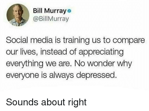 appreciating: Bill Murrayo  @BillMurray  Social media is training us to compare  our lives, instead of appreciating  everything we are. No wonder why  everyone is always depressed Sounds about right