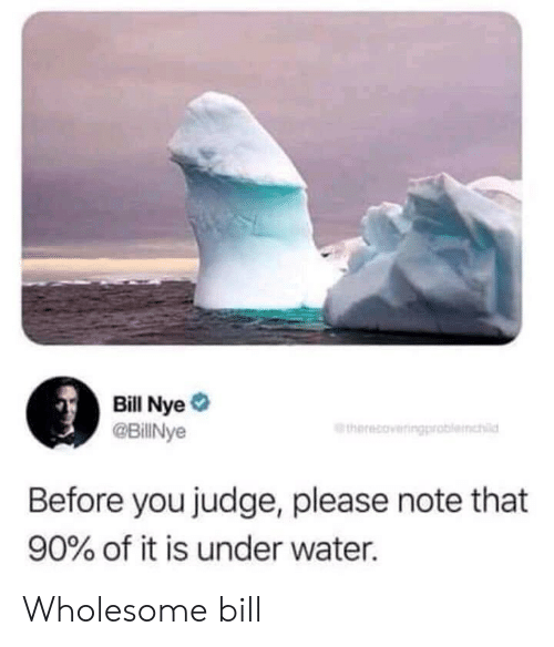 Bill Nye: Bill Nye  @BillNye  therecoveringproblemhl  Before you judge, please note that  90% of it is under water. Wholesome bill