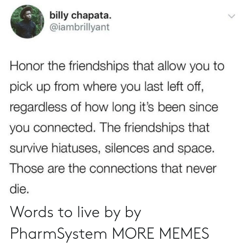 Dank, Memes, and Target: billy chapata.  @iambrillyant  Honor the friendships that allow you to  pick up from where you last left off,  regardless of how long it's been since  you connected. The friendships that  survive hiatuses, silences and space.  Those are the connections that never  die. Words to live by by PharmSystem MORE MEMES