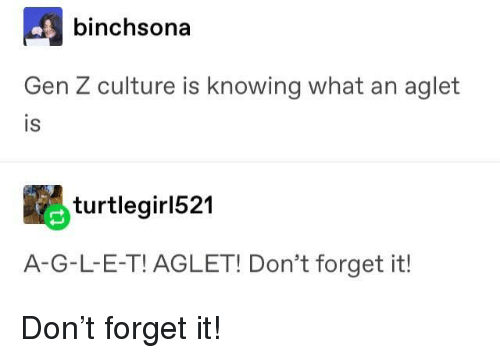 E.T., Culture, and Knowing: binchsona  Gen Z culture is knowing what an aglet  IS  is  turtlegirl521  A-G-L-E-T! AGLET! Don't forget it! Don't forget it!