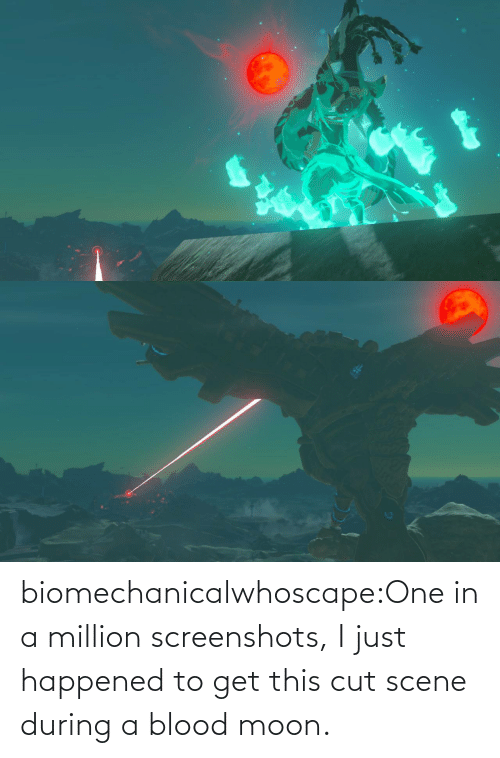 During: biomechanicalwhoscape:One in a million screenshots, I just happened to get this cut scene during a blood moon.
