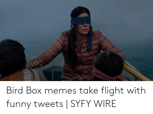 Funny Memes Youtube: Bird Box memes take flight with funny tweets | SYFY WIRE