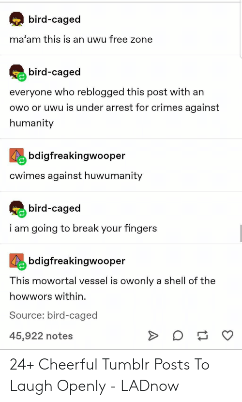 Tumblr, Break, and Free: bird-caged  ma'am this is an uwu free zone  bird-caged  everyone who reblogged this post with an  owo or uwu is under arrest for crimes against  humanity  bdigfreakingwooper  Cwimes against huwumanity  bird-caged  i am going to break your fingers  bdigfreakingwooper  This mowortal vessel is owonly a shell of the  howwors within  Source: bird-caged  O  45,922 notes 24+ Cheerful Tumblr Posts To Laugh Openly - LADnow