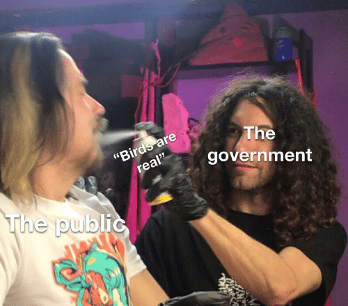 """Birds, Government, and Public: """"Birds are  real""""  The  government  The public"""