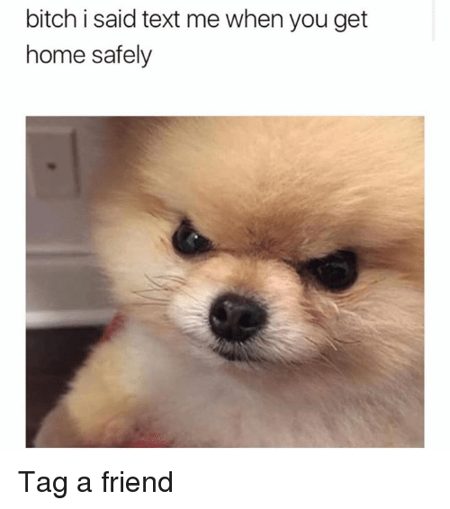 Bitch, Dank, and Home: bitch i said text me when you get  home safely Tag a friend